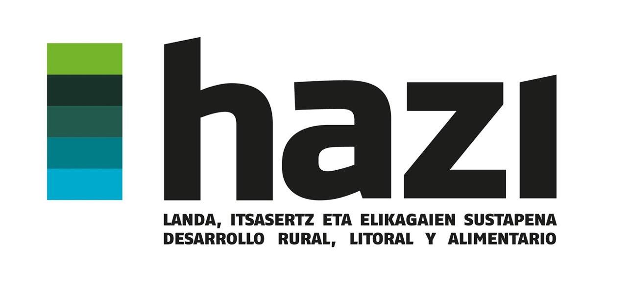 HAZI FUNDAZIOA